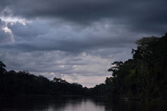 THE Forests. In the amazonas AMAZONAS, COLOMBIA Stock Photos