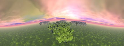 Forests - 3D render Stock Photo
