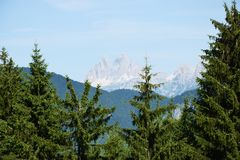 Forests and Dolomiti mountains royalty free stock photography