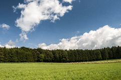 Forests and meadows Royalty Free Stock Photography