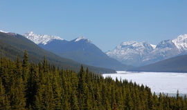 Forests and mountains Royalty Free Stock Photos