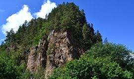 The forests and mountains of the Caucasus. Mountain vegetation, against the blue of the sky and clouds. The reserve is in the urban district Karachay Karachay Royalty Free Stock Photos