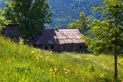 Among the forests and mountains on the lawn there is an old abandoned wooden hut. Green trees, sun rays, nice summer day Stock Photos