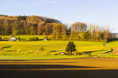 Forests and plowed fields in Switzerland. Swiss village surrounded by forests and plowed fields early in the morning. Agriculture in Switzerland, arable land and Royalty Free Stock Image