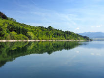 Forests reflected in Liptovska Mara, Slovakia stock photo