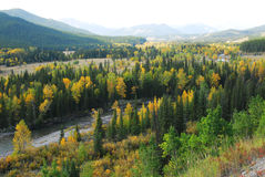 Forests in river valley. Colorful autumn view of  forests in river valley, kananaskis country, alberta, canada Stock Photo