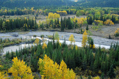 Forests in river valley Royalty Free Stock Image