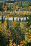Forests in river valley Royalty Free Stock Images