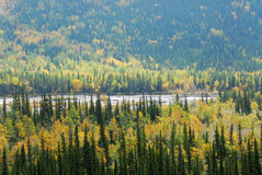 Forests in river valley Royalty Free Stock Photo