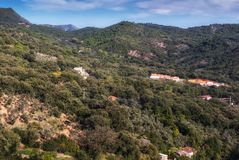 Forests of the Sierra de Aracena. The Sierra de Aracena and Picos de Aroche Natural Park is a natural area located in the north of the province of Huelva Stock Image