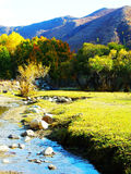 Forests,  streams and meadows. A stream flows through the golden mountains.  zhaofuxin Stock Photo