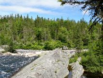 Forests of Nova Scotia. Forests and streams in Nova Scotia forest in Royalty Free Stock Images