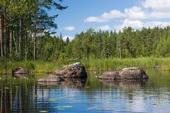 Foreststeiniger See mit Blumen Lizenzfreie Stockfotografie