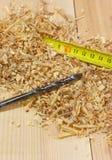 Foret se trouvant sur la planche en bois parmi la sciure Photographie stock libre de droits