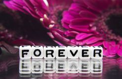 Forever. Text message with pink flowers royalty free stock photography