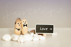 Forever love idea. Two peanuts with drawn faces hugging on pink vanilla background. stock photos