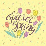 Handwritten lettering. Forever Spring. Motivational handwritten lettering. Romantic design element that can be used on a T-shirt, postcard, poster, invitation Stock Images