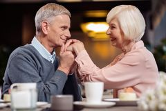 Jolly mature man kissing wife hand Royalty Free Stock Photography