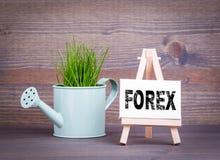Forex, concept d'affaires Pot d'arrosage miniature avec l'herbe verte fraîche de ressort Photo stock