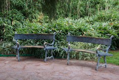Forged bench in an exotic park. In high quality Royalty Free Stock Images