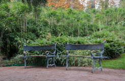 Forged bench in an exotic park. In high quality Stock Photography