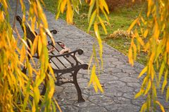 Forged bench with leaves on an autumn background royalty free stock photography