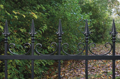 Forged black decorative wrought iron fence closeup, autumnal trees background, fallen leaves horizontal large detailed park scene Stock Photo
