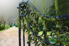 Forged gates. Ancient, iron, the forged gates Royalty Free Stock Image