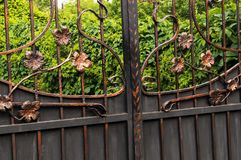 Metal gates decorated with forged elements. Forged metal gate elements. Decorative processing of metal gates Royalty Free Stock Photography