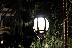 Forged vintage lantern illuminates the leaves of the tree. Bright light emanating from a street lamp royalty free stock photography