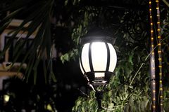 Forged vintage lantern illuminates the leaves of the tree. Bright light emanating from a street lamp royalty free stock photos