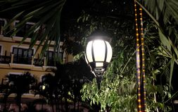 Forged vintage lantern illuminates the leaves of the tree. Bright light emanating from a street lamp stock photo