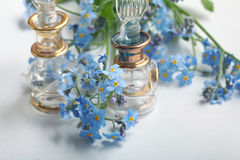 Forget-me-on glass  wet Royalty Free Stock Photography