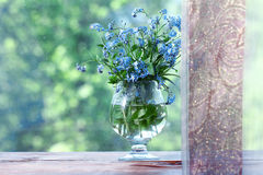 Forget-me-on glass, wet flowers Royalty Free Stock Image
