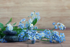 Forget-me-on glass, wet flowers Royalty Free Stock Photo