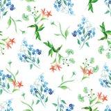 Forget-me-not και τομέων άνευ ραφής διανυσματική τυπωμένη ύλη watercolor λουλουδιών Στοκ εικόνα με δικαίωμα ελεύθερης χρήσης