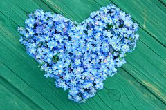 Forget-me-not. Heart shaped from forget-me-not flowers on wooden background Stock Image