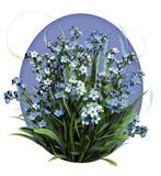 Forget Me Not. A bouquet of forget me not flowers vector illustration