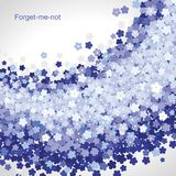 Forget-me-not background Royalty Free Stock Image