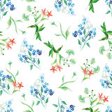 Forget-me-not and field flowers watercolor seamless vector print Royalty Free Stock Image