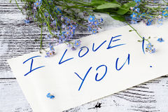 Forget-me-not flower on anв love note. Forget-me-not flower on anв love note stock photos