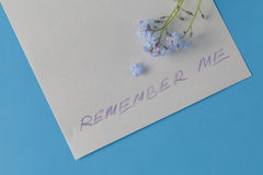 Forget-me-not flower on note Royalty Free Stock Photography