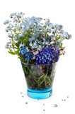 Forget-me-not flowers in a blue transparent glass. On a white background with drop shadow Royalty Free Stock Photos