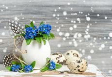 Forget me not flowers egg shell Easter decoration Royalty Free Stock Photography
