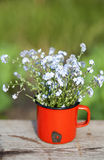 Forget me not flowers in a jar on wooden background Stock Photography