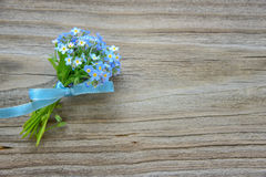 Forget-me-not flowers Royalty Free Stock Images
