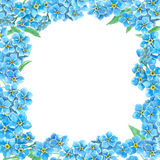 Forget me not frame Royalty Free Stock Images
