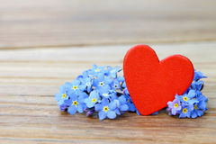 Forget me not and heart Stock Image