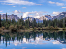 Forget Me Not Pond in Kananaskis Stock Image