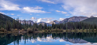 Forget Me Not Pond in Kananaskis Royalty Free Stock Image